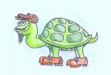 Skildpadden Ejnar
